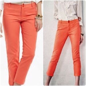 Coral Crop Chino